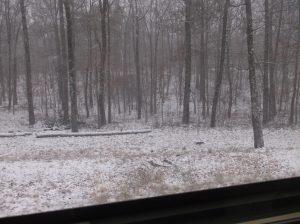 Snow at Alapine